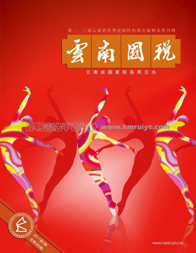 云南国税封面设计--昆明睿冶平面设计有限公司